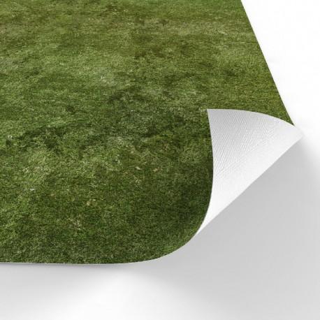 "Heroic Grass 48"" x 36"""